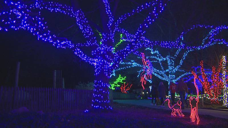 FILE - Topeka Zoo Lights 2020