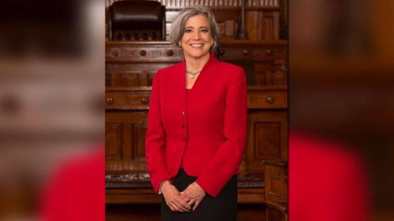 Outgoing Senate President Susan Wagle issued her final remarks Sunday night, with the new...