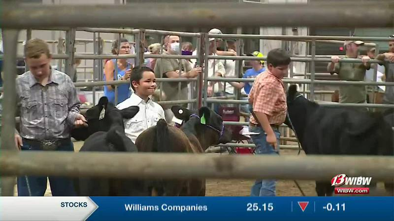 Shawnee Co Fair continues this weekend with livestock judging and live music