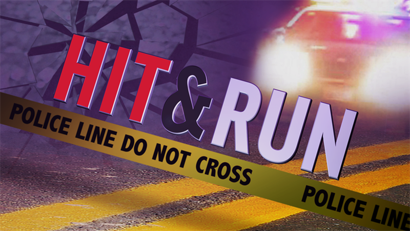 The Jackson County Sheriff's Office is searching for a hit-and-run vehicle and suspect.