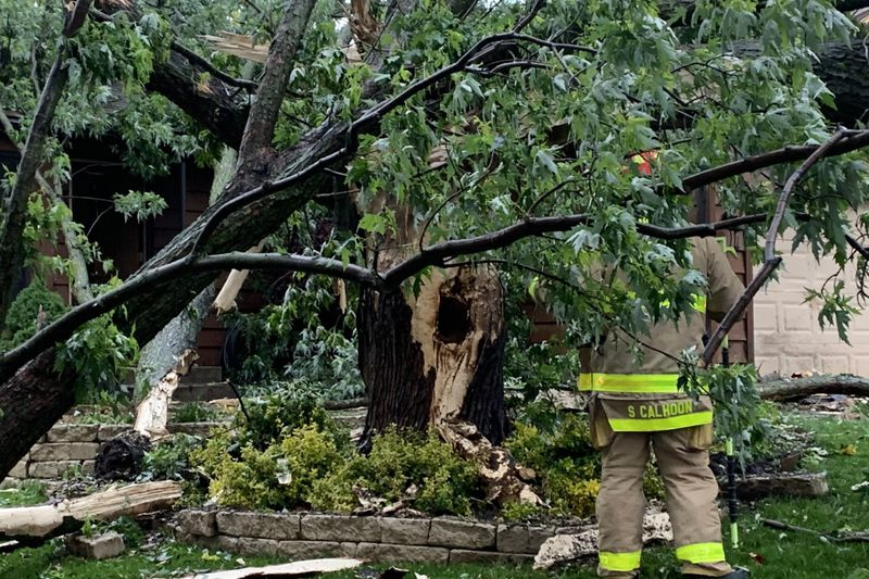 Two homes have damage after lightning struck a tree and fell on one of them on Sunday, May 16,...