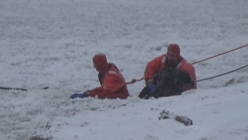 Two members of the Mission Township Fire Department's Water Rescue Team rescue Oskie the dog...
