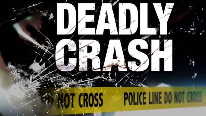 A 65-year-old Americus man was killed Monday morning when the semi-trailer he was driving...