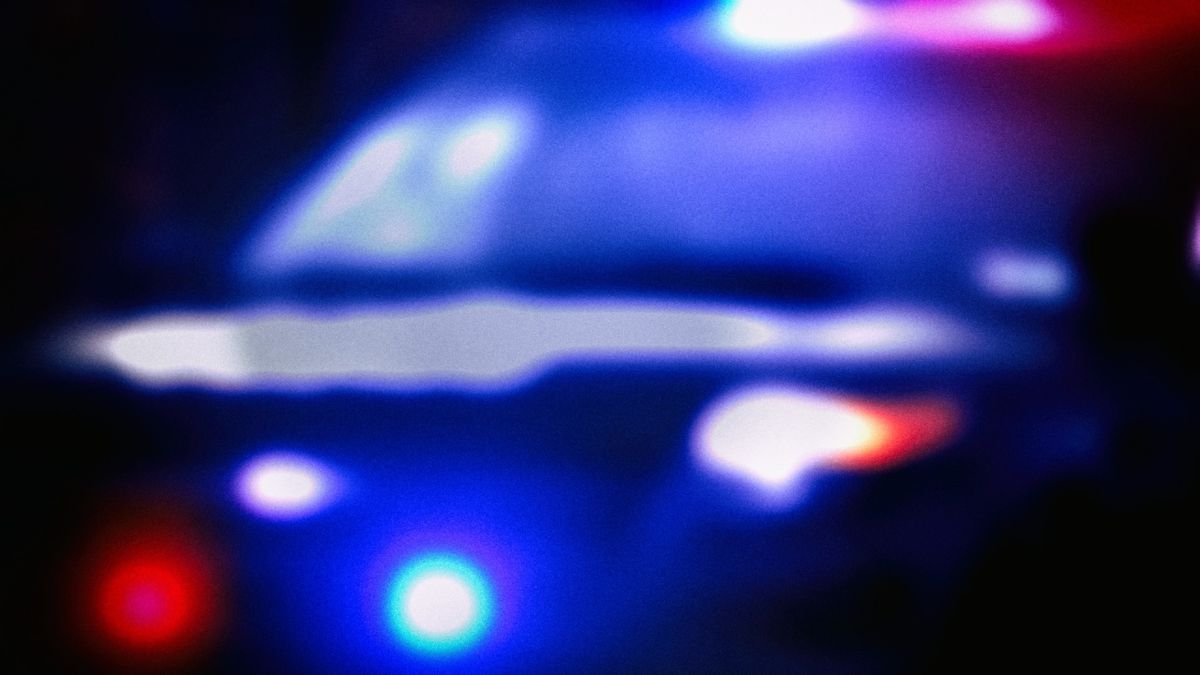 A son accused of trying to drive his mother to her death has been found incompetent to stand...