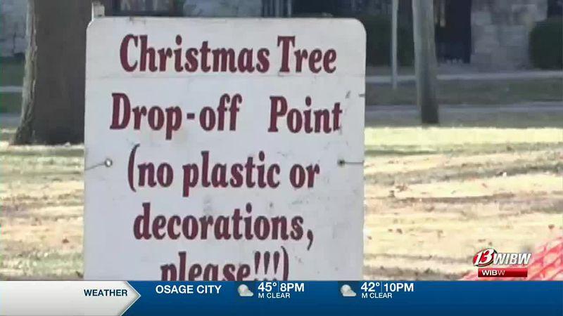 Manhattan Christmas trees find new purpose