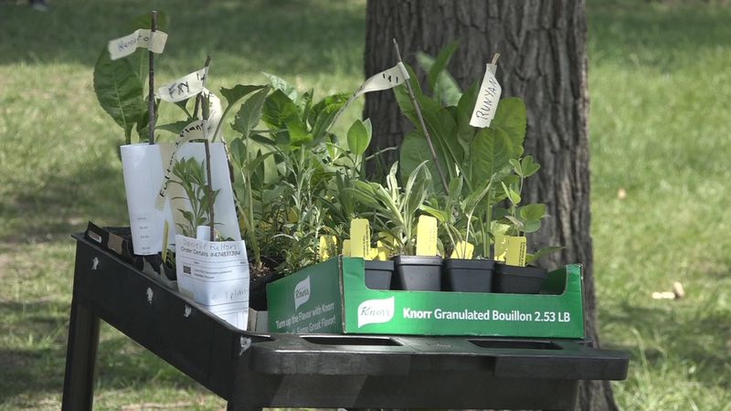 Topeka Zoo had 2,000 plants for sale for Mother's Day. (May 8, 2021)