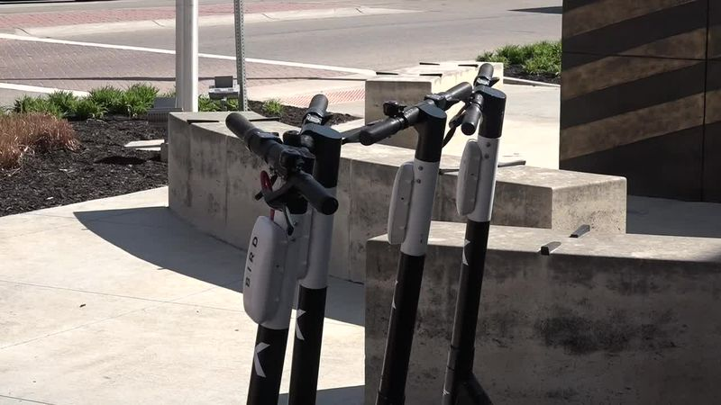 Bird Scooters in Topeka (WIBW)