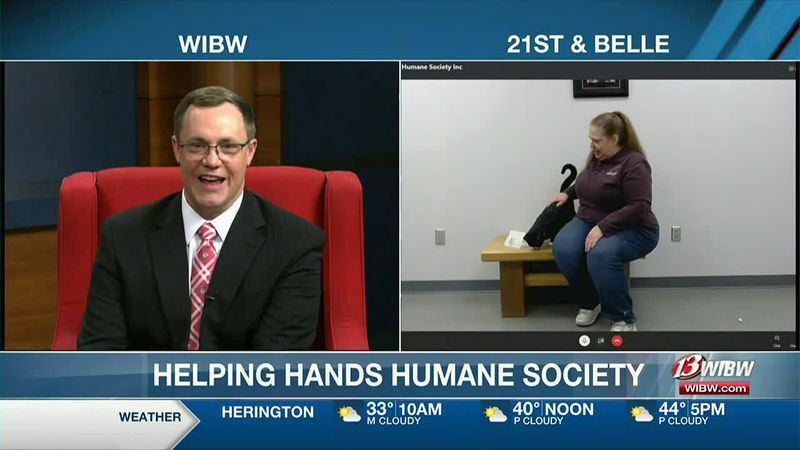13 NEWS This Morning at 5am - Helping Hands Cats & Valentines cards