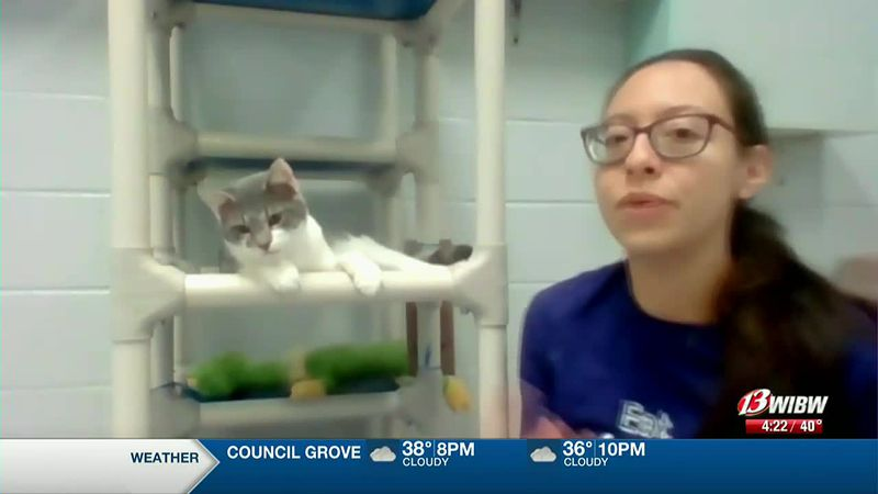 Emi Griess from Helping Hands Humane Society discusses the shelter's holiday wish list.